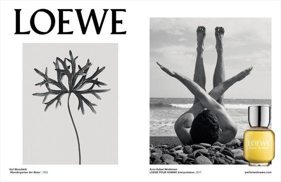 Cartelería imagen de marca Loewe man